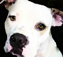 Pit Bull Art - I'm A Lover by Sharon Cummings