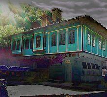 Memories 1 by Plamen Hristov