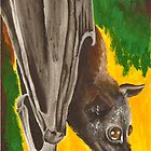 Fruit Bat by Royce Davis