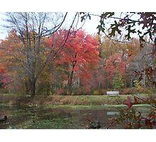 Late Autumn on Greenbelt Lake Photographic Print
