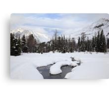 Winter land II Canvas Print