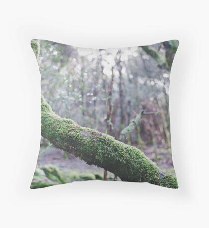 Enchanted #2 Throw Pillow