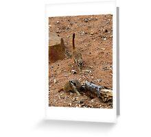 Meerkat Buddies Greeting Card