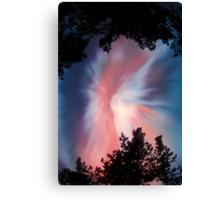Pink Aurora Borealis,  Finland Canvas Print
