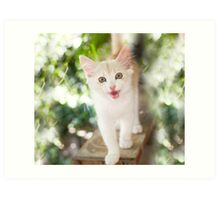 Lucky Little Paws Rescue and Adoption 9 Art Print