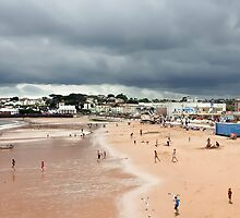 Paignton Beach- ipad by DARREL NEAVES