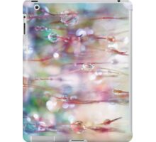 Rainbow Rain Catcher iPad Case/Skin