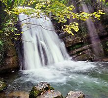 Janet's Foss - The Yorkshire Dales by Dave Lawrance