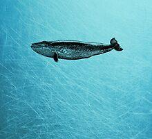 Whale iPad Case by Carol Knudsen