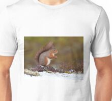 Cute Red squirrel Unisex T-Shirt