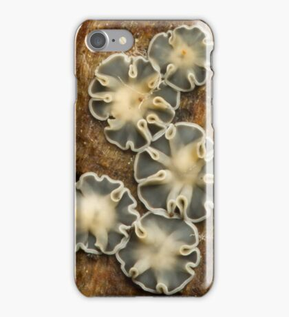 Slime Mold iPhone Case/Skin
