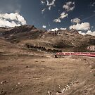Bernina Express by Bimal Tailor
