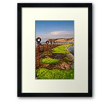 Moss by the pool Framed Print