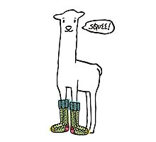 Doodle squee llama knitting crochet socks Christmas Photographic Print