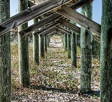 Under The Boardwalk by Lee  Gill