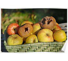 Basket of bad apples Poster