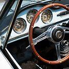 Alfa Romeo Giulia Spider by Flo Smith