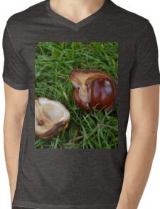 Conkers on the Autumn Grass Mens V-Neck T-Shirt