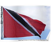 National Flag Flying Poster