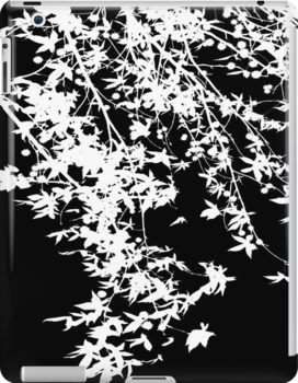 white on black by Ingrid Beddoes