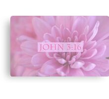 John 3:16 In Pink Canvas Print