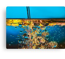 water and oil Canvas Print