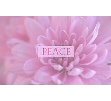 Peace In Pink  Photographic Print
