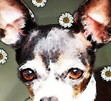 Chihuahua Dog Art - Daisy Day by Sharon Cummings