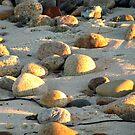 Sunlight on Lobsterville Beach by Choux
