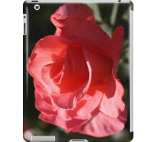 Coral Pink Rose Photograph iPad Case iPad Case/Skin