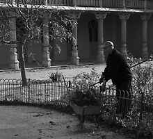 Gardening by James Taylor
