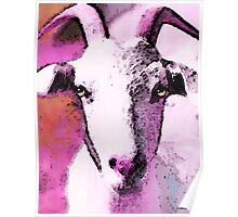 Goat Art - Pinky Poster