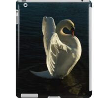 Swan Lake iPad Case iPad Case/Skin