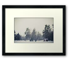 Falling snow Framed Print