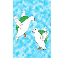 Two Turtle Doves Photographic Print