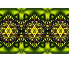 Green Lotus Photographic Print