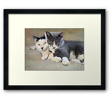 Oscar & Grayson Framed Print