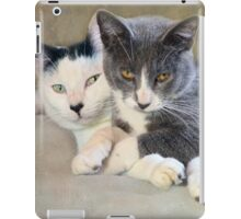 Oscar & Grayson iPad Case/Skin