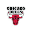 Chicago Bulls by Barbo