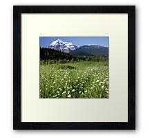 Meadow, Mt Robson, BC Framed Print