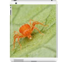 Mite-y Cute iPad Case/Skin