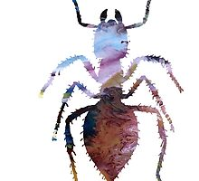 Abstract colorful ant painting by MordaxFurritus