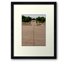 A bridge for pedestrians Framed Print