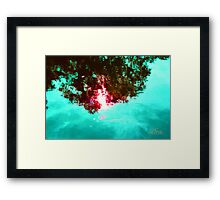 Jeweled Sky Reflection Framed Print