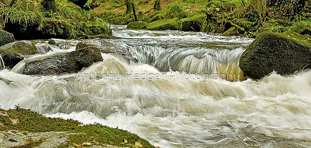 Golitha Falls, Cornwall by Anthony Hedger Photography