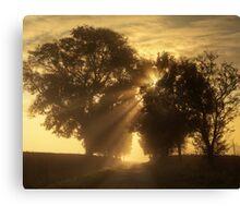 Misty Rays Canvas Print
