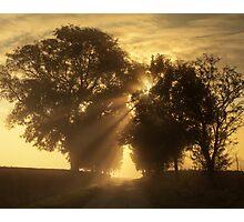 Misty Rays Photographic Print