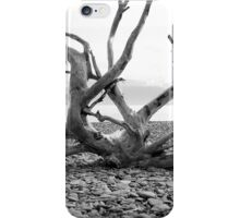 drift wood iPhone Case/Skin