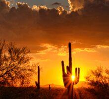 Desert Golden Rays Sticker