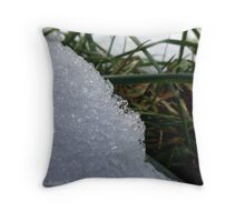 Wet snow Throw Pillow